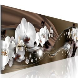 Kép - Chocolate Dance of Orchid
