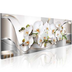 Kép - Orchids II