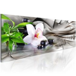Kép - Zen composition: bamboo, orchid and stones