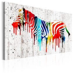 Kép - Colourful Zebra
