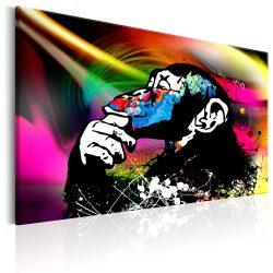 Kép - Monkey Disco