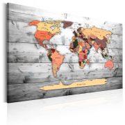 Kép - World Map: New Directions