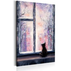 Kép - Cat's Stories