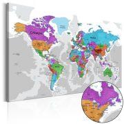 Kép - Territory of Colours