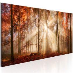 Kép - Autumnal Dawn