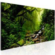 Kép - The Fairytale Forest