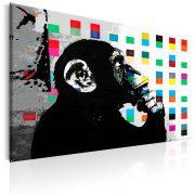 Kép - Banksy The Thinker Monkey