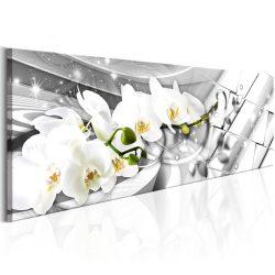 Kép - Twisted Orchids