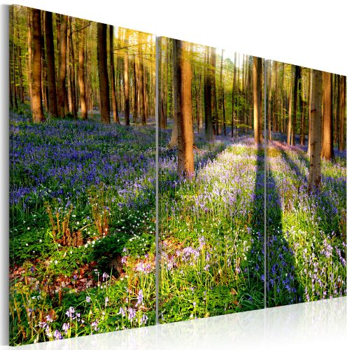 Kép - Spring Forest