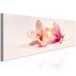 Kép - Beautiful Magnolias