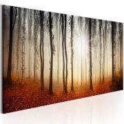 Kép - Autumnal Fog