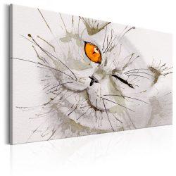 Kép - Grey Cat