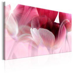 Kép - Nature: Pink Tulips