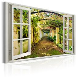 Kép - Window: View on Pergola