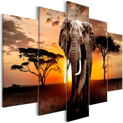 Kép - Wandering Elephant (5 Parts) Wide