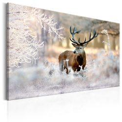 Kép - Deer in the Cold