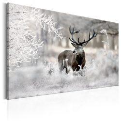 Kép - Lonely Deer