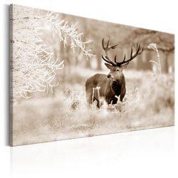 Kép - Deer in Sepia