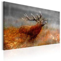 Kép - Roaring Deer