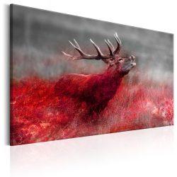 Kép - Bloody Field