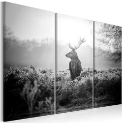 Kép - Black and White Deer I
