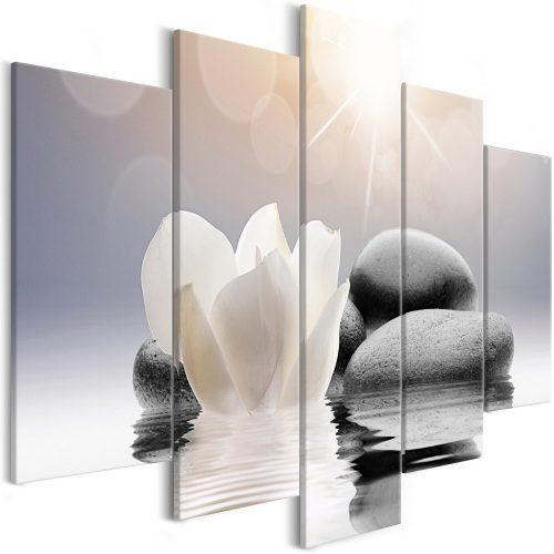 Kép - Natural Lightness (5 Parts) Wide