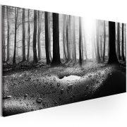 Kép - Forest after Rain (1 Part) Narrow