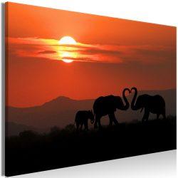 Kép - Elephants in Love (1 Part) Wide