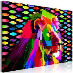 Kép - Rainbow Lion (1 Part) Wide