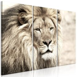 Kép - The King of Beasts (3 Parts) Beige