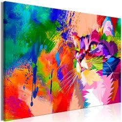 Kép - Colourful Cat (1 Part) Wide