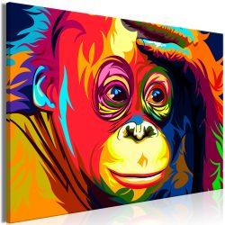 Kép - Colourful Orangutan (1 Part) Wide