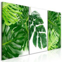 Kép - Palm Leaves (3 Parts)