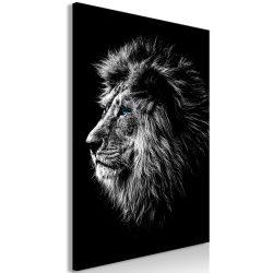 Kép - Blue-eyed Lion (1 Part) Vertical