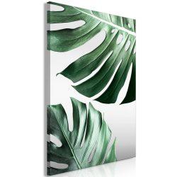 Kép - Monstera Leaves (1 Part) Vertical