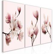 Kép - Spring Magnolias (3 Parts)