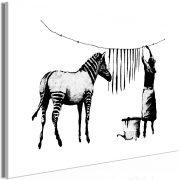 Kép - Banksy: Washing Zebra (1 Part) Wide
