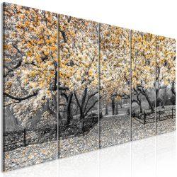 Kép - Magnolia Park (5 Parts) Narrow Orange