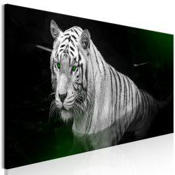 Kép - Shining Tiger (1 Part) Green Narrow