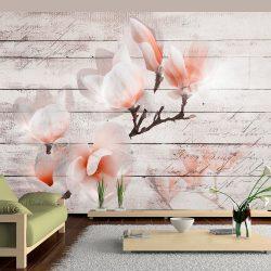 Fotótapéta - Subtlety of the Magnolia