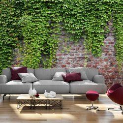 Fotótapéta - Brick and ivy