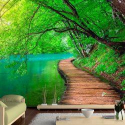 Fotótapéta - Green peace