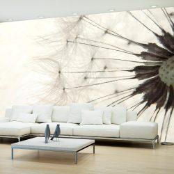 Fotótapéta - White Dandelion