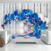 Fotótapéta - Cobaltic orchid