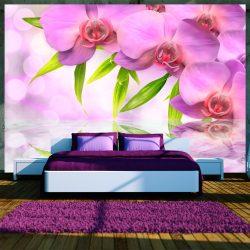 Fotótapéta - Orchids in lilac colour