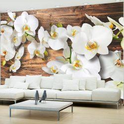 Fotótapéta - Forest Orchid