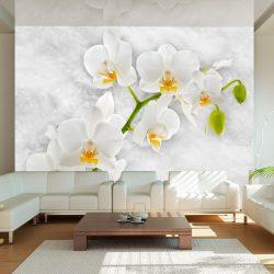 Fotótapéta - Lyrical orchid - White