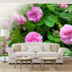 Fotótapéta - Summer garden