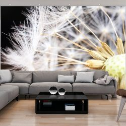 Fotótapéta - Fluffy dandelion