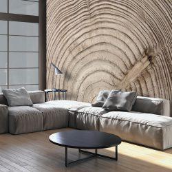Fotótapéta - Wood grain